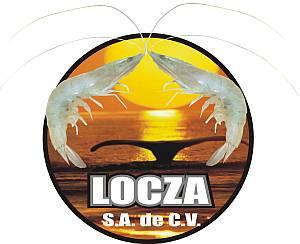 Congeladora LOCZA S.A. de C.V.